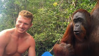 Repeat youtube video Indonesia Day #11 - B!#&H SLAPPED BY AN ORANGUTAN!!!