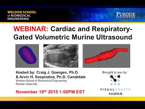 November 2015 Webinar - Cardiac and Respiratory-Gated Volumetric Murine Ultrasound
