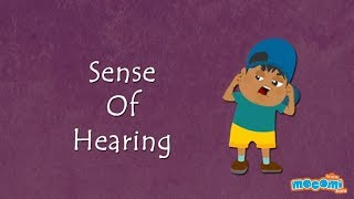 Sense of Hearing-How the Body Works | Human Senses | Science for Kids | Educational Videos by Mocomi