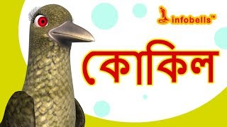 কোকিল  গান   Bengali Rhymes for Children   Infobells