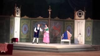 Свадьба Фигаро 1 действие