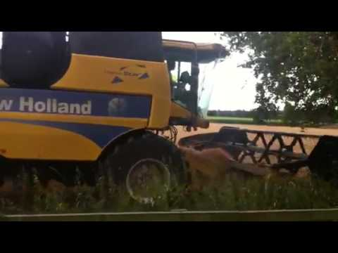 New Holland in action