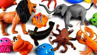 Learn Wild Zoo Animals Names Safari Animals Names Education Fun For Kids