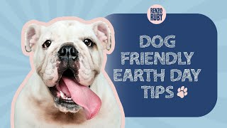Dog friendly Earth Day Tips