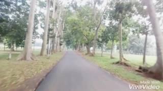 Lagu Terbaru Dewi Persik - SURGA DUNIA