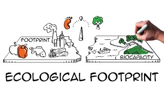 Ecological footprint: Do we fit on our planet? thumbnail