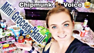 Fun Mini Grocery Haul //Chipmunk Voice 🐿️ // Tasting a New Low Calorie Ice Cream
