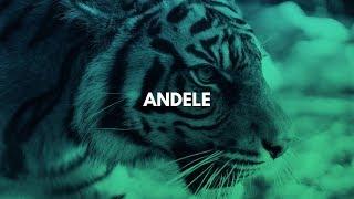 Afro Trap Instrumental 2019 ''Andele'' [Agressive Afrobeat Type Beat]