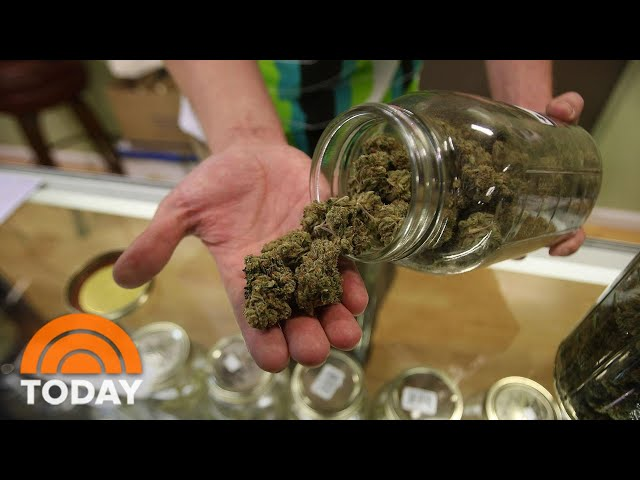 How Marijuana Legalization And Other Initiatives Did In Election | TODAY