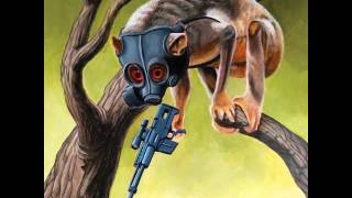Sunny Day Real Estate - Lipton Witch