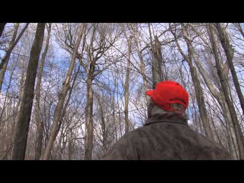 Michigan Out of Doors T.V.  #1305