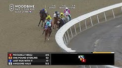 Woodbine: May 20, 2019 - Race 3