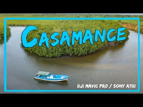 La Casamance, poumon vert du Sénégal / Reportage / 4K