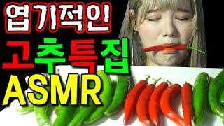 띠미의 엽기적인 병맛 ASMR 청양고추 오이고추 모든고추특집 이팅사운드 [ All peppers eating sound ]