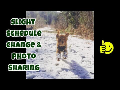 Slight Schedule Change & Photo Sharing (Cute Animals) - Random Information - VOL. 3