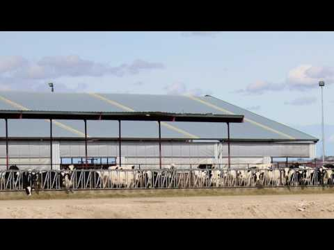 2017 Canyon County Farm Family of the Year