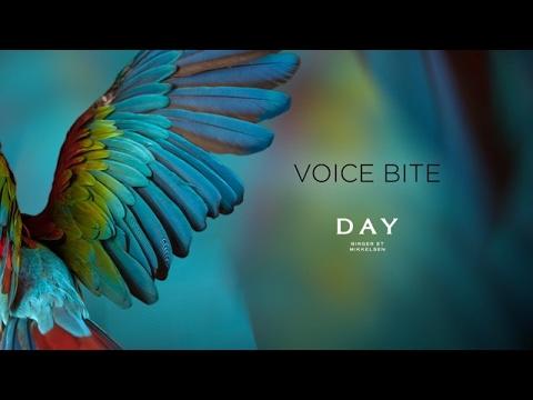 DAY Birger et Mikkelsen - Voice Bites