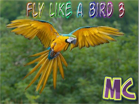 Летай как птица 3