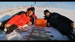 Щука на ЖЕРЛИЦЫ Рыбалка с юным подписчиком МОРЕ положительных эмоций