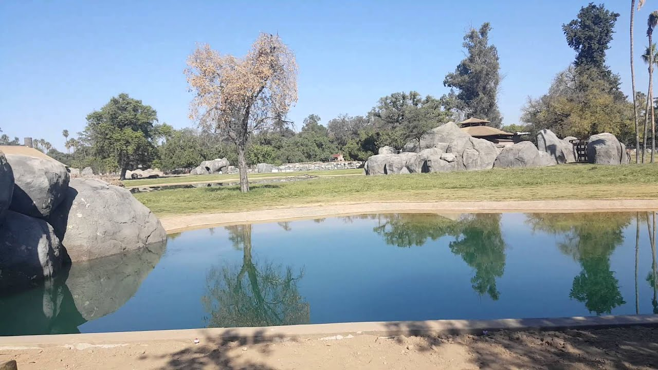 New Fresno Chaffee Zoos African Adventure 2015 YouTube