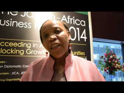 Japan-Africa Business Forum Review 2014