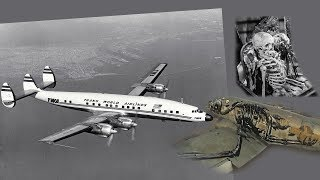 The Airplane Landed in a Airport with Skeletons!