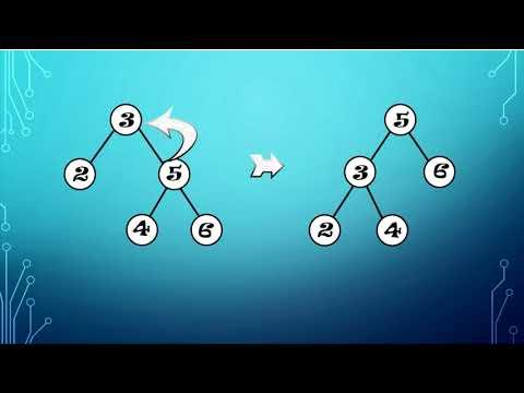 Visualization of Splay Tree
