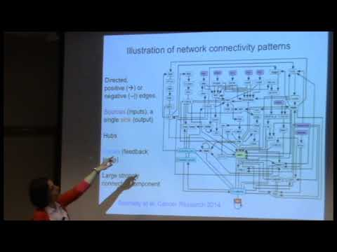 Reka Albert - Network-based dynamic modeling of biological systems