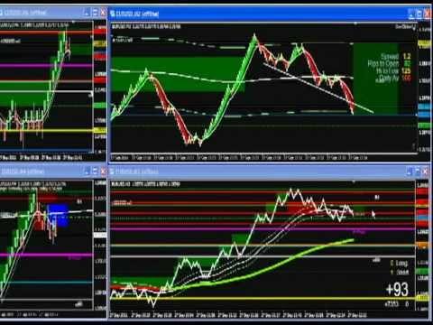 Pipspring trading system
