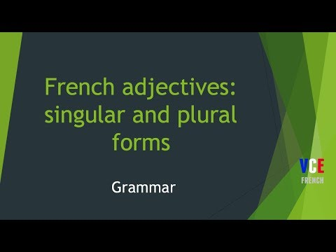 French Adjectives Singular And Plural Youtube