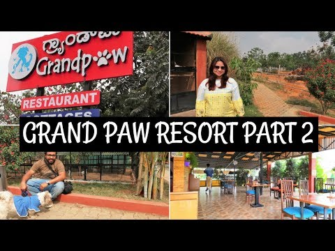 Pet Resort Tour In India | Trip To A Pet Resort Episode II | The Grand Paw Resort