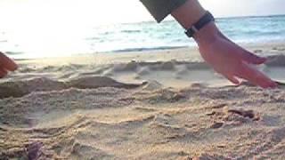 沖縄に行って撮影してきました もっと見たい方はコチラ↓ http://blogs.y...