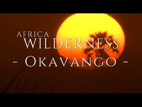 The Okavango Delta, Wilderness Safaris Style