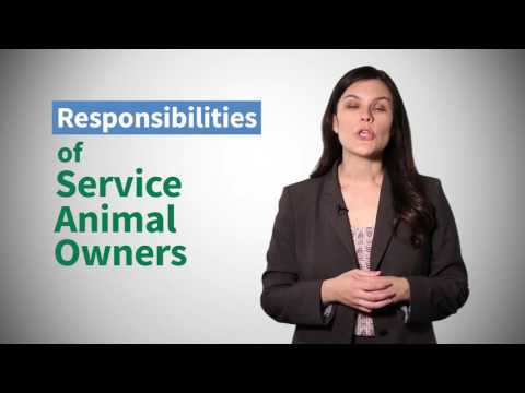 Download Youtube: DRTx Legal Tip Video: Rights of Veterans and Others with Service Animals