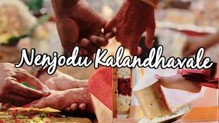Nenjodu Kalandhavale | En uyirodu urainthavale full Song | Sembaruthi Serial Song | Video Song