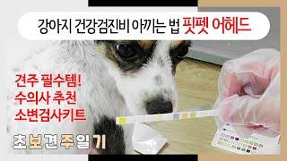 설쌤이 추천한 강아지 소변검사 키트로 건강검진비용 아끼…
