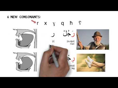 Arabic (MSA) Pronunciation Video 2: Consonants (DRAFT)