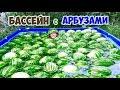 БАССЕЙН С АРБУЗАМИ   НЕ ДОМ - DIY