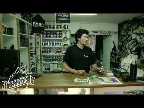 Wide World of Cannabis: Uruguay Pt. I