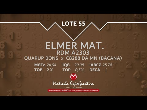 LOTE 55 MATINHA EXPOGENÉTICA 2021