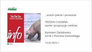 INFO PROTEST ROLNIKÓW: TRZODA CHLEWNA 13.02.2015 r.