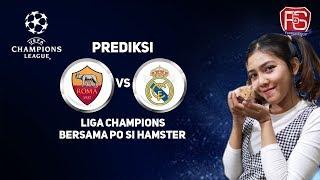 Prediksi REAL MADRID VS AS ROMA bersama PO si Hamster