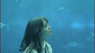 美ら海水族館美しかった   自撮り棒ゲットしたから、これからロケが楽しみだなー  ♀️ *:;;:*+*:;;:*+*:;;:*+*:;;:*+*:;;:*+*:;;:*:;;:*+*:;;:*+*:;;:*+*:;;:*+*:;;:* ツイッター、インスタ ...