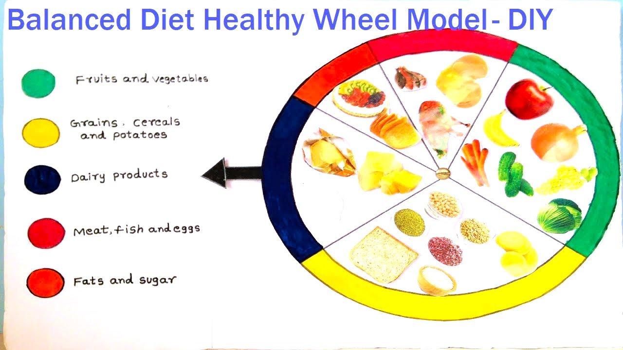 school project on balanced diet