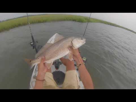 Saltwater Multi-Species Inshore Fishing in S. Delaware