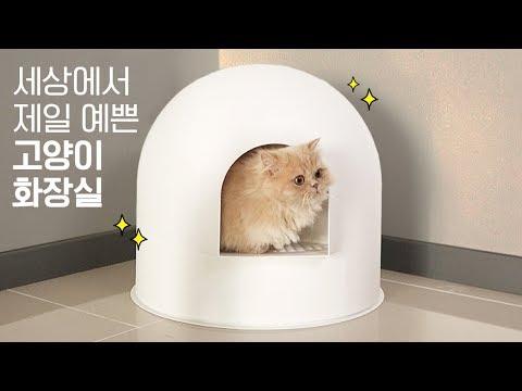 세상에서 제일 예쁜 고양이 화장실✨ 솔직후기! | 김메주와고양이들