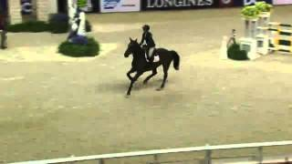 Video of EASY MONEY ridden by LACEY GILBERTSON from ShowNet!
