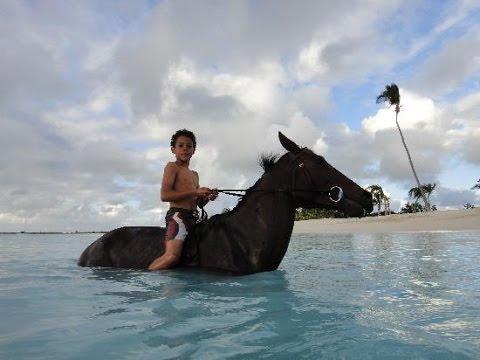 Codrington / Barbuda