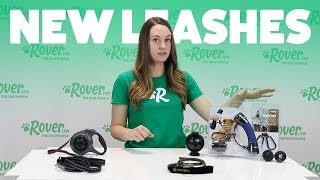 Reviewing New Dog Leashes   Rover.com