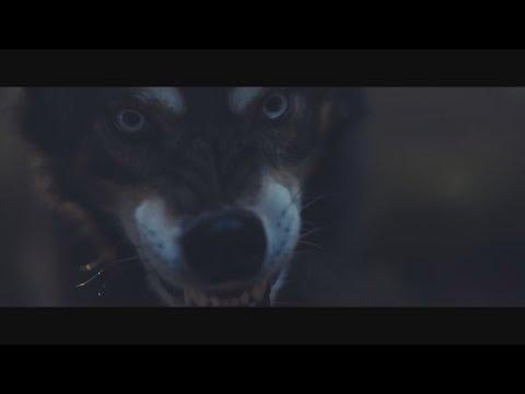 Елена Звездная Замок оборотня фан видео